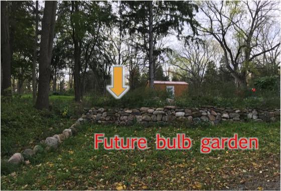 Bulbgarden2